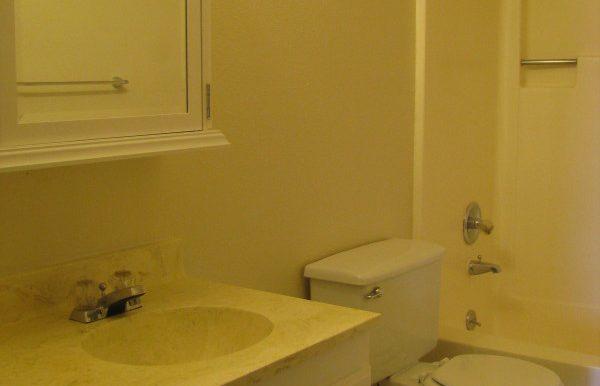 2945ewalnut-6.bathroom