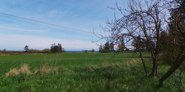 2373portwilliamsroad-pasture